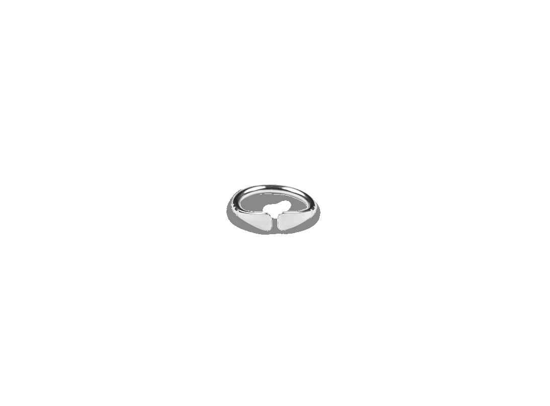Paddlefish Ring Silver slide