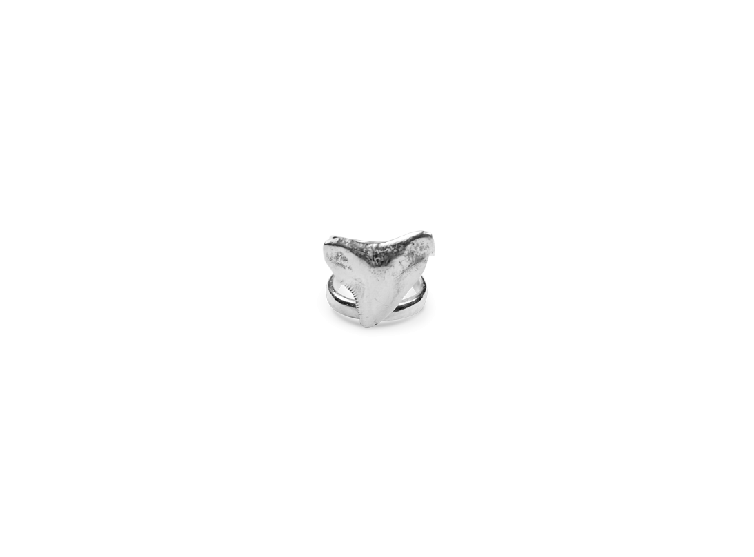 Shark tooth ring silver slide