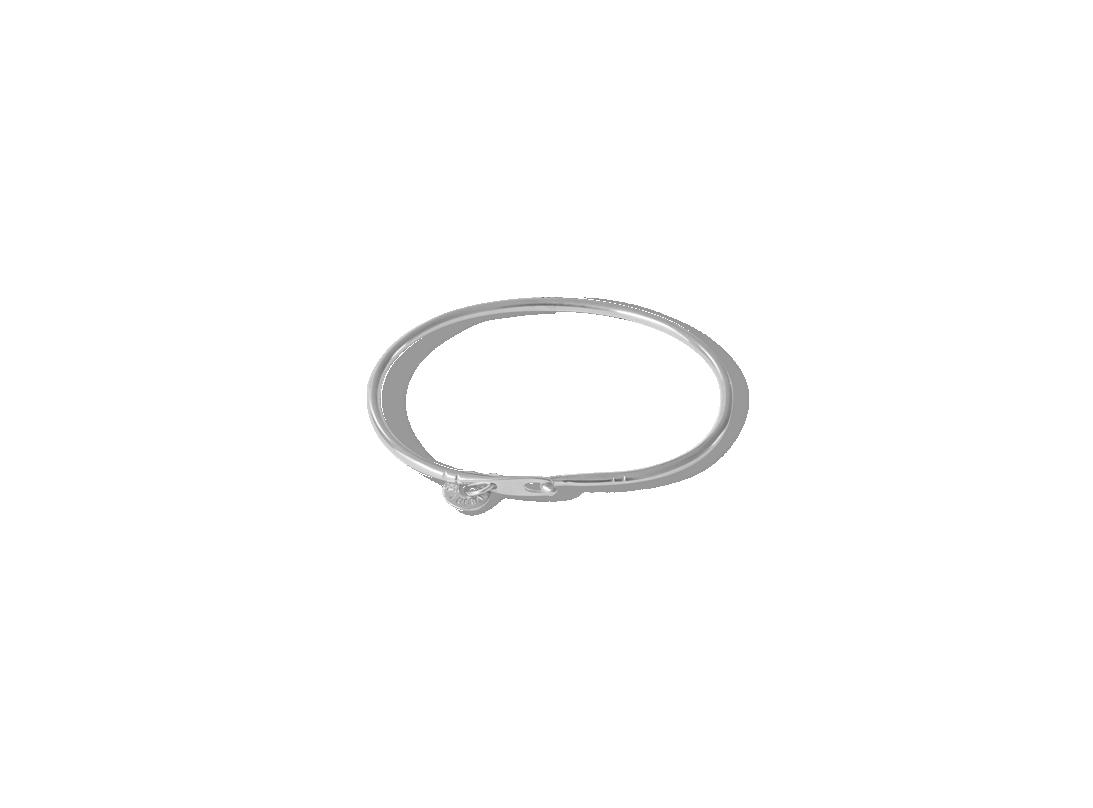 paddlefish Clasp bracelet silver slide